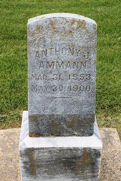 Anthony Joseph Ammann, Jr