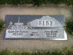 James William Bibe