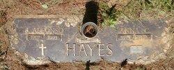 Anna Louise <I>Colvard</I> Hayes