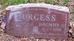 Dagmar S Burgess