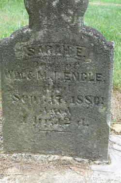 Sarah E Engle