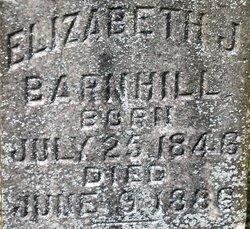 Elizabeth Jane <I>Newell</I> Barnhill