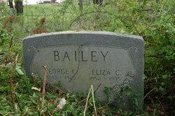 Eliza Chapman <I>Gillespie</I> Bailey