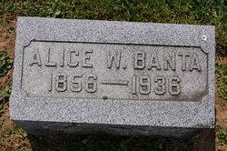 Alice Wood <I>Tisdale</I> Banta
