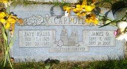 "Isabelle ""Faye"" <I>Hales</I> Carroll"