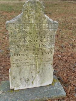 Eugene Pritchard Albright