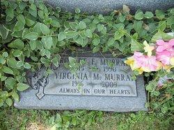 Virginia M Murray