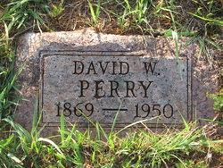 David Walter Perry
