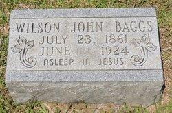 Wilson John Baggs