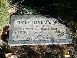 Robert Lindsay Bray