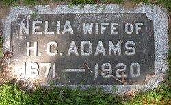 Nelia H Adams