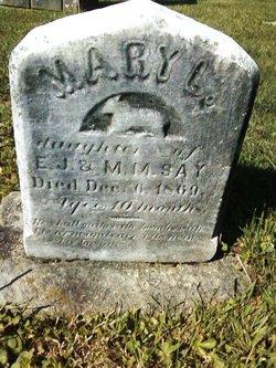 Mary L. Say