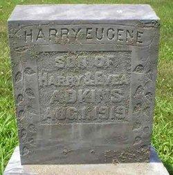 Harry Eugene Adkins