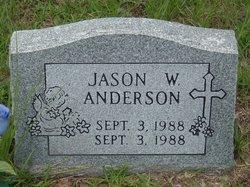 Jason W Anderson