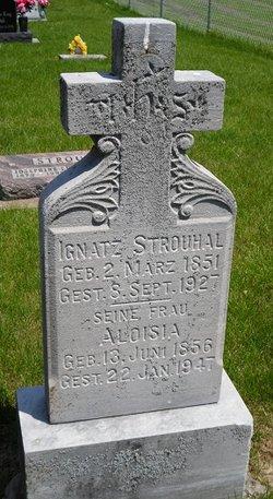 Aloisia Strouhal