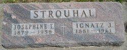 Ignatz J. Strouhal