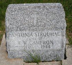 Antonia <I>Strouhal</I> Cameron