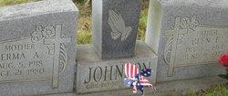 Glen E Johnson