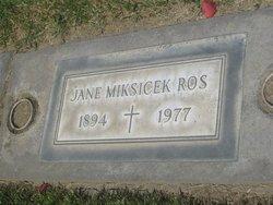 Jane <I>Miksicek</I> Ros