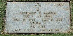 Richard E Agena