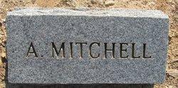 "Elizabeth Alabama ""Allie"" <I>Mattison</I> Mitchell"