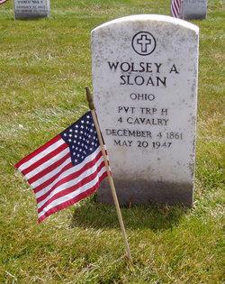 Wolsey A Sloan
