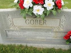 Iva Elizabeth <I>Williams</I> Gober