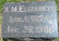 A. M. Elizabeth Niemoller