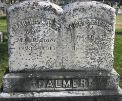 Moses G Palmer