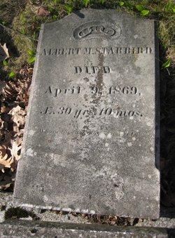 Albert M Starbird
