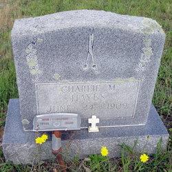 Charlie Melvin Hayes