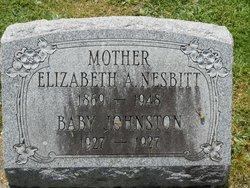 Elizabeth A. Nesbitt