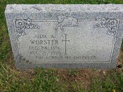 Julia A Worster