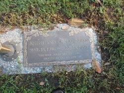 Joseph Patrick Counihan