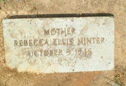 Rachel Ann Rebecca <I>Ellis</I> Minter