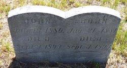 Eliza M. Tovey