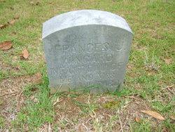 Frances J Wingard