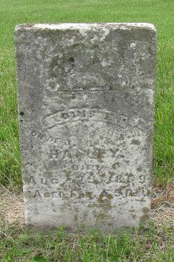 Louis E. Halley