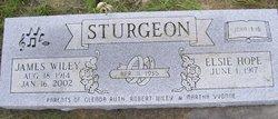 James Wiley Sturgeon
