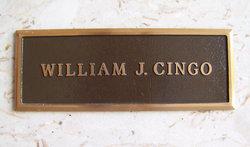 William J Cingo