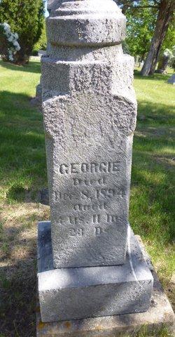 Georgie Porter