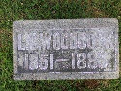 Lucinda C Woodcock