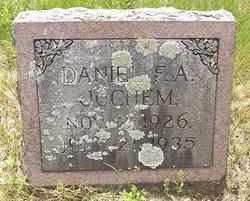 Daniel F A Jochem