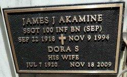 James J Akamine