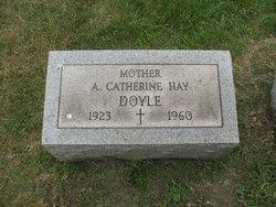 Anna Doyle