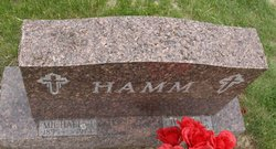 Michael J Hamm