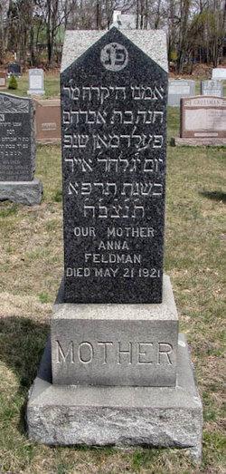 Anna <I>Kotleiervcey</I> Feldman