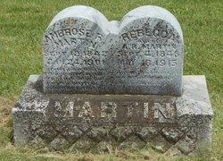 Ambrose R Martin
