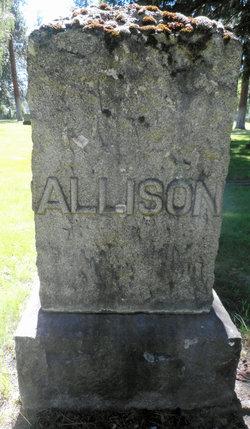 Gladys S. Allison