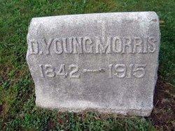 David Young Morris